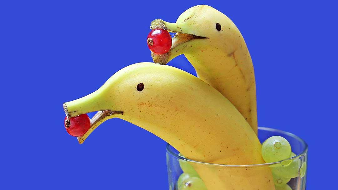 delfin-bananas